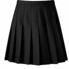 Davenport Knife Pleat Skirt - New Yr 7 Skirt Senior sizes