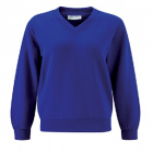 Wolvey Royal V Neck Sweater with logo